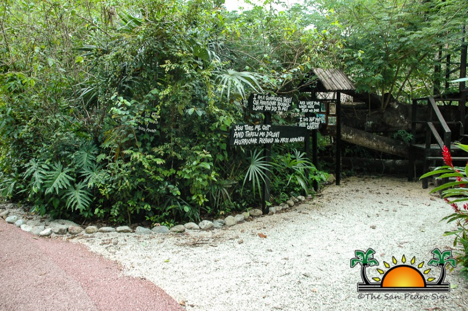 The-Belize-Zoo-3