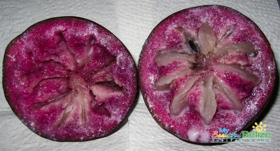 Belize Fruits Caimito-2