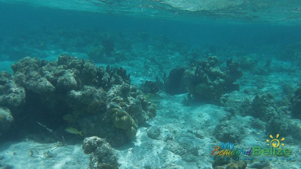 Blue Hole Dive 27
