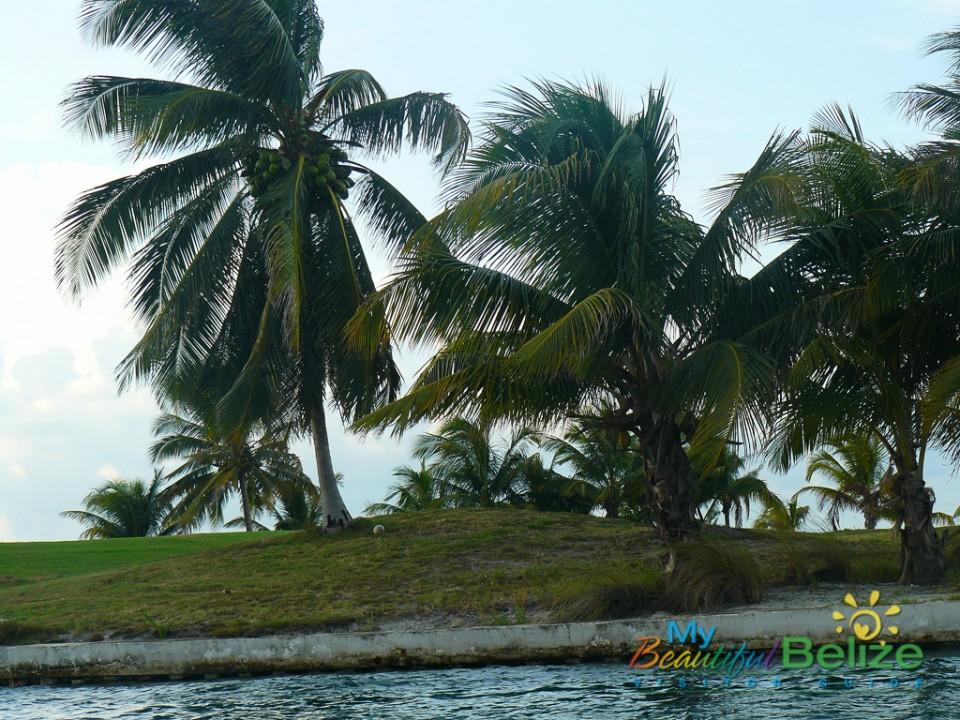 St. George's Caye 6