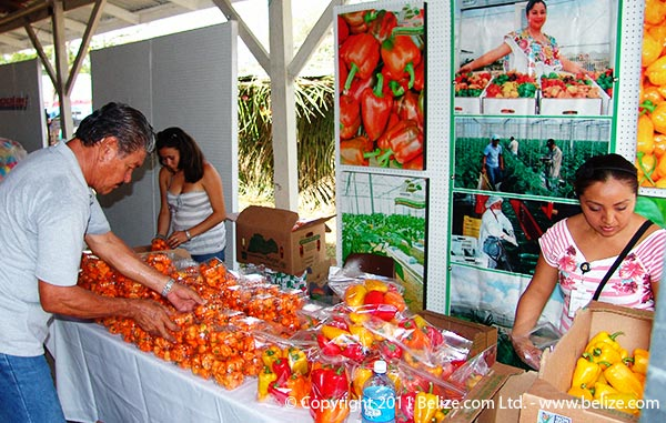 belize-habanero-peppers-agriculture-show