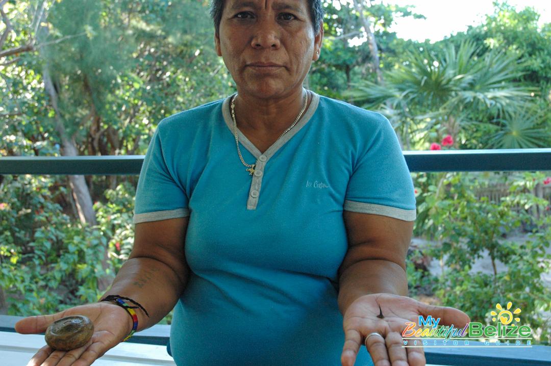 Rosario Panti Maya Healer-1