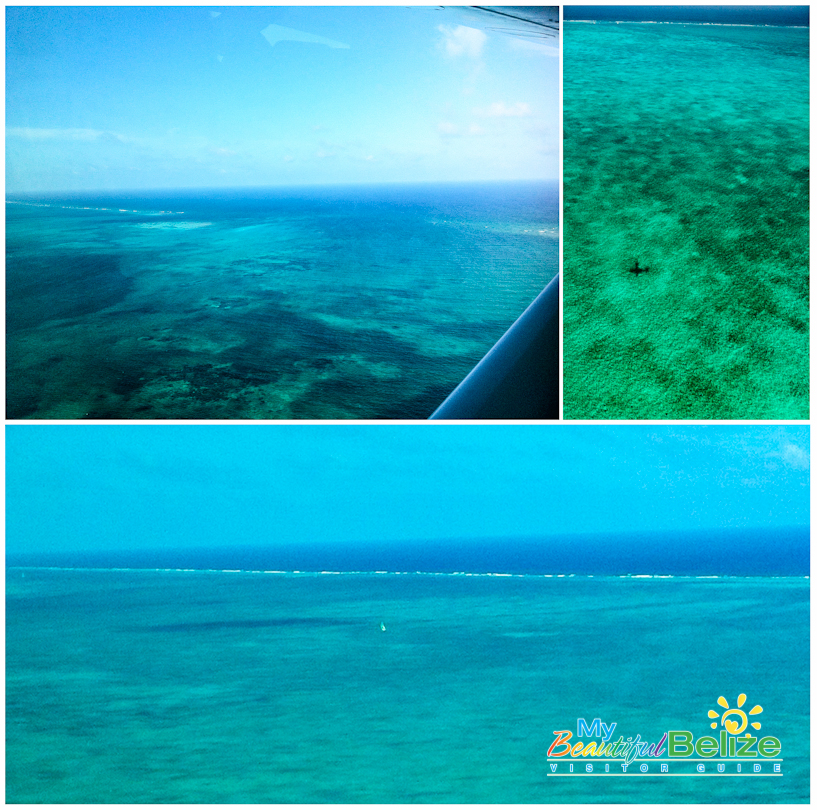 Aerial Flight Reef View TropicAir