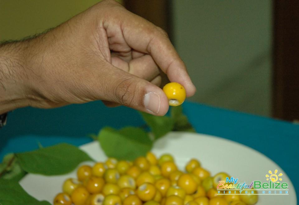 Craboo Fruit-1