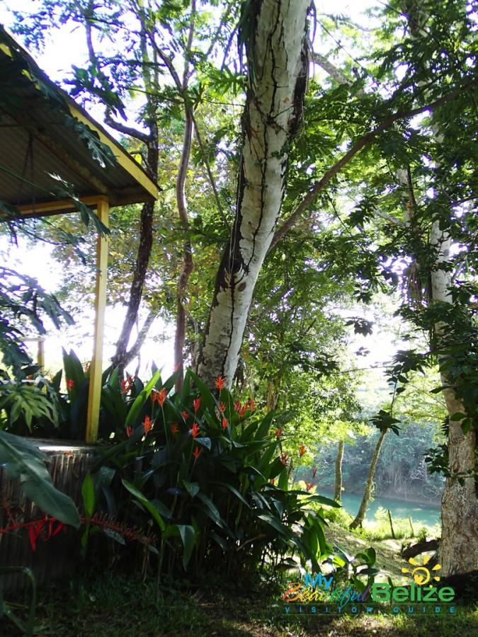 Backroads Belize Village Explore Howler Monkey Resort-17