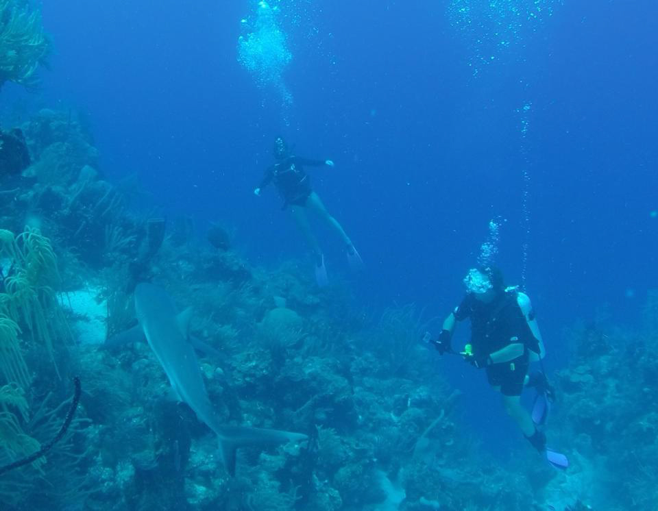 Always a thrill diving the deep blue my beautiful belize - Dive deep blue ...