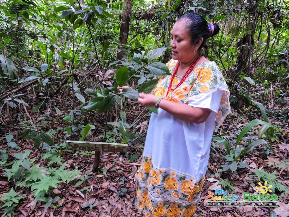 Aurora Garcia Saqui Maya Healer-3