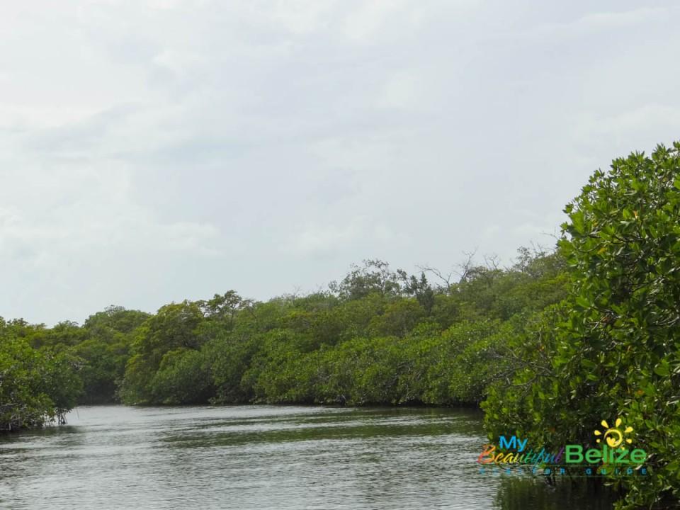 Belize Mexico Channel-5