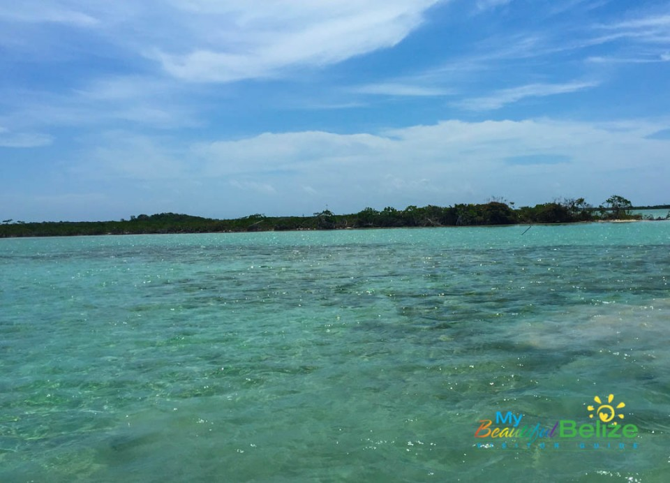 Leeward Coast of Ambergris Caye-2