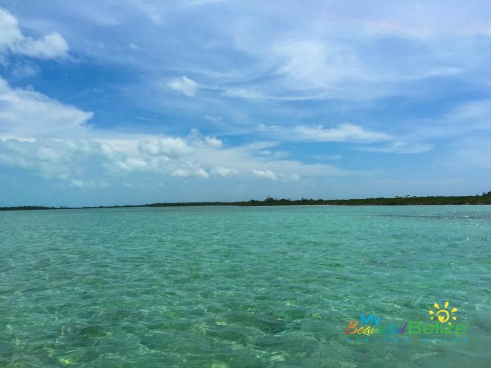 Leeward Coast of Ambergris Caye-3