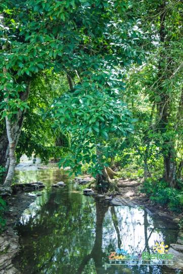 Toledo Villages Creeks Roads-19