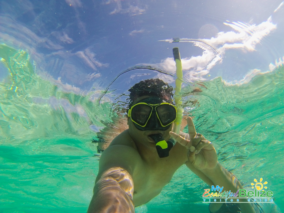 Dion Snorkels Glovers Reef