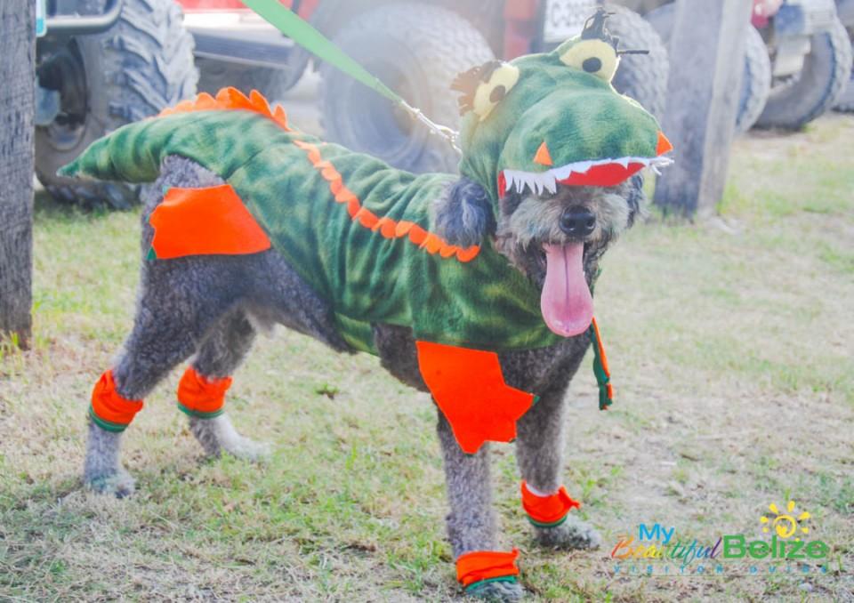 saga-halloweeen-spooktacular-17